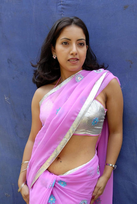 tollywood preethi mehra saree high quality unseen pics
